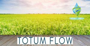 water softener Basildon reduce limescale